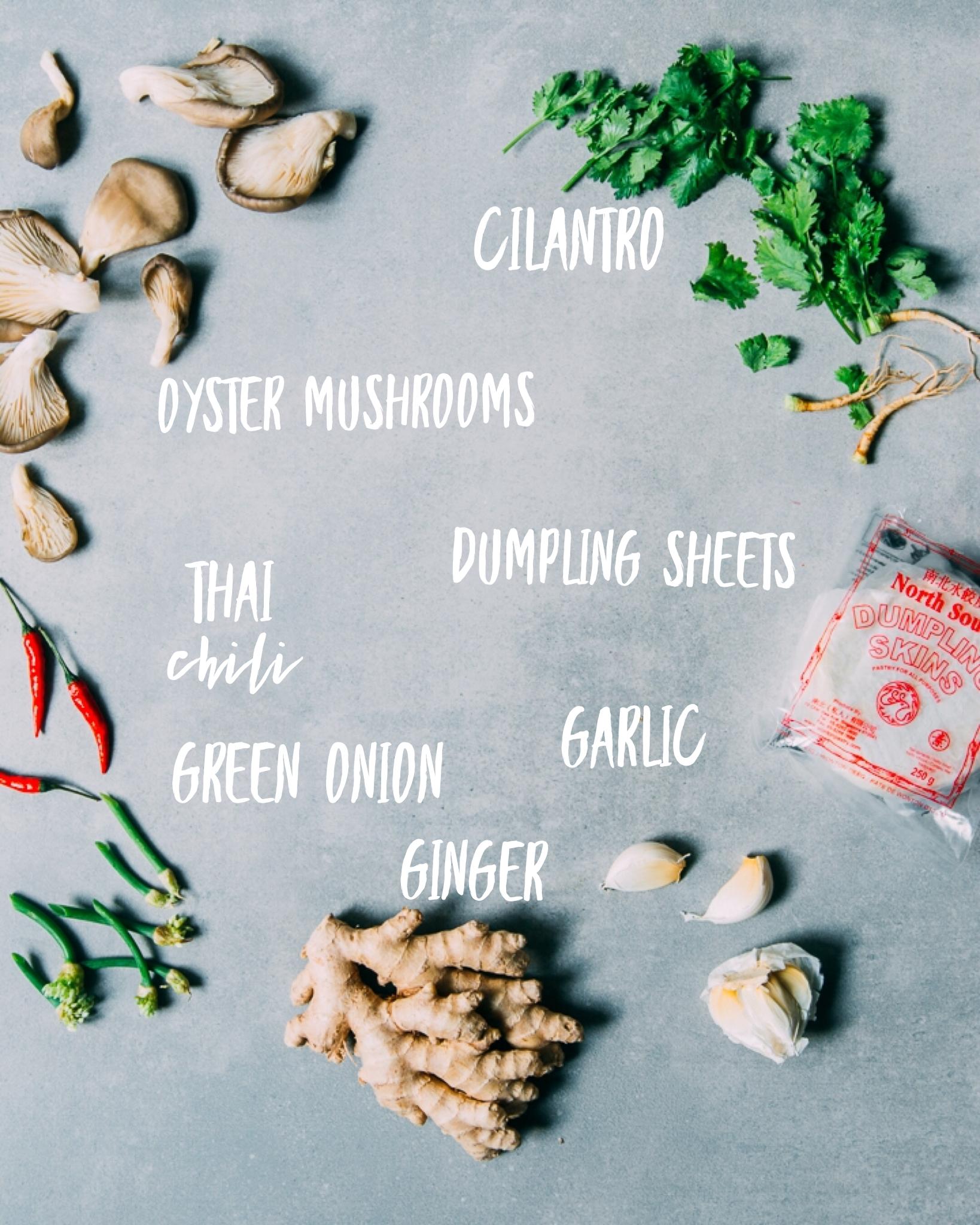 Vegan Kale + Mushroom Dumplings